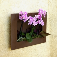 les cadres jardini res pour orchid e orchidee facile by. Black Bedroom Furniture Sets. Home Design Ideas